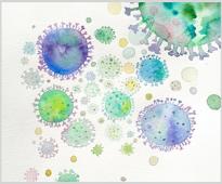Пробиотици, пребиотици и ензими – стимулатори на чревното здраве при животните